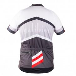 ds-summer-jersey-back